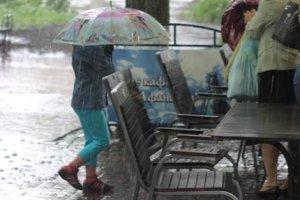 Прогноз погоды: синоптики ошибаются, животные – никогда