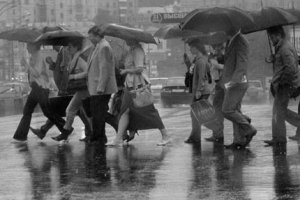 Разговор о дожде