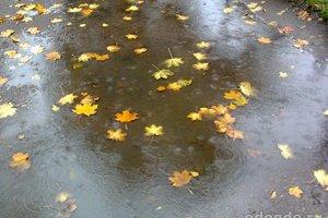 Осенний ветер зазывал в гости дождь