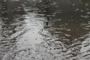 Дождь шумит
