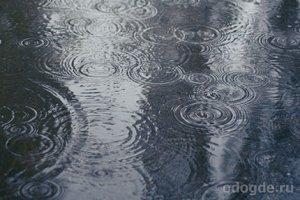 Сказка про добрый дождь