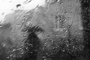 Осенний серый дождь