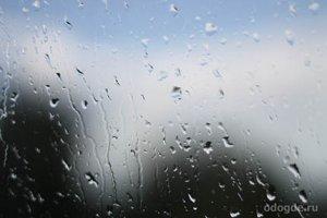 Дождливый человек и питерский дождь