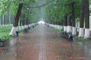 Снова дождь. Твой любимый дождь. Наш любимый дождь.