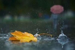 Что символизирует дождь в поэзии?