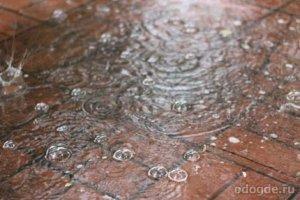 Удивительные осадки в виде дождя