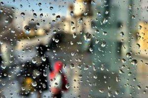 Язык дождя бывает разным