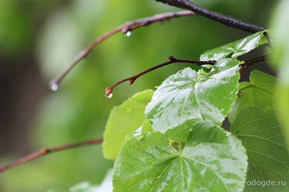 Детская игра «Капельки дождя»