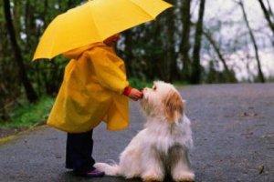 Детские картинки под дождём