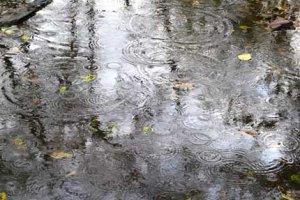 Мокрый дождь