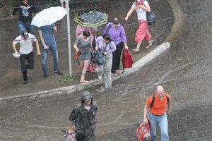 Зарядил дождь и привел всех окружающих в движение