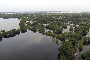 Амур и наводнение