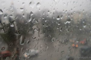 Причины дождя и любви