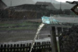 Домовой и день дождя