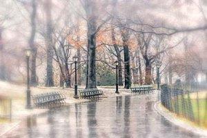 Осень… осень… дождь… дождь… или последний дождь декабря