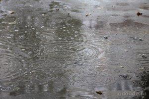 Хотите узнать, к чему снится дождь?