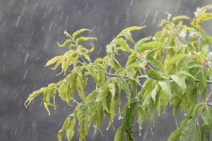Капли дождя или немного отвлеченной теории