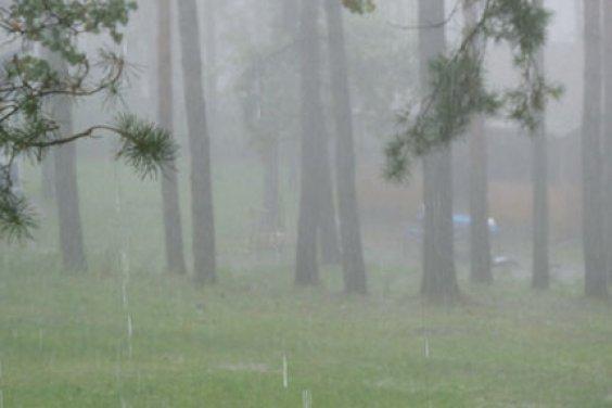 На турбазе в дождливую погоду