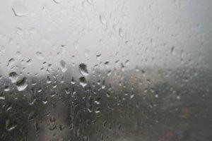 Она мечтала стать дождем