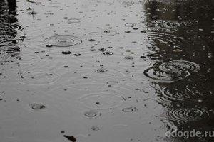 Дождь невероятно одинок