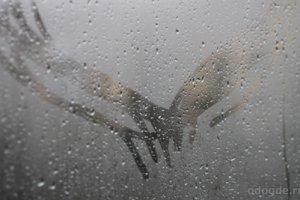 Сквозь дождь…