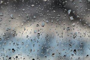 Очарование осенних дождей