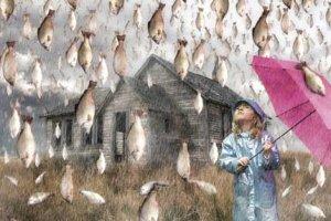 Гипотезы, версии и объяснения необычных дождей