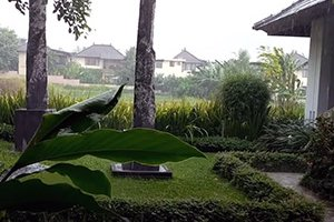 Дожди на Бали