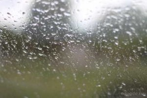 Дождь без предрассудков