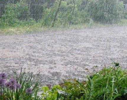 дождь как из ведра