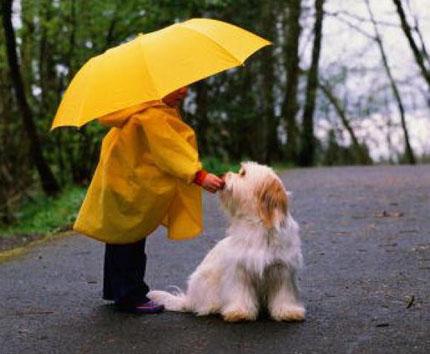 дождь и дети