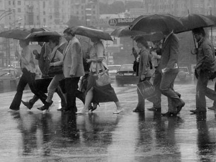 беседа о дожде