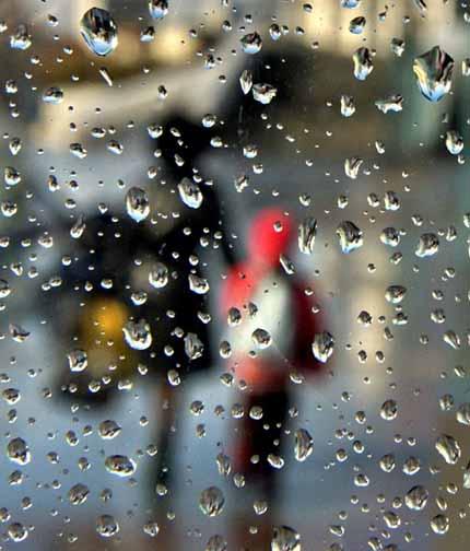 консервированный дождь