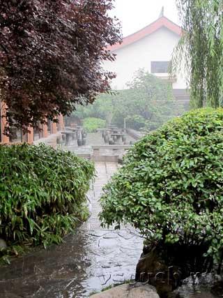 Китайский дождь