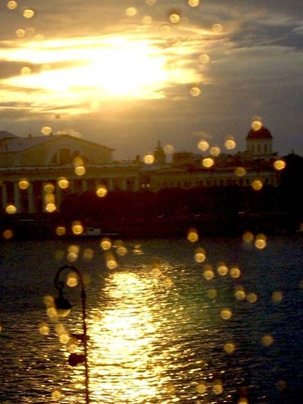 желтый дождь