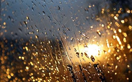 Тема дождя и счастье