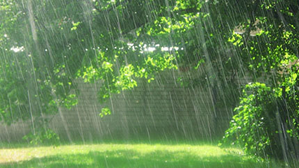 Виды дождей