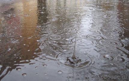 художественное описание дождя