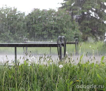 Ближайший дождь