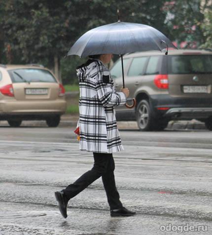 осень дождь