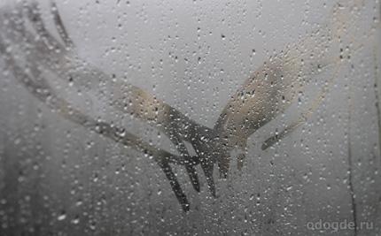 Сквозь дождь