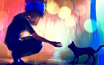Котенок мок под дождем