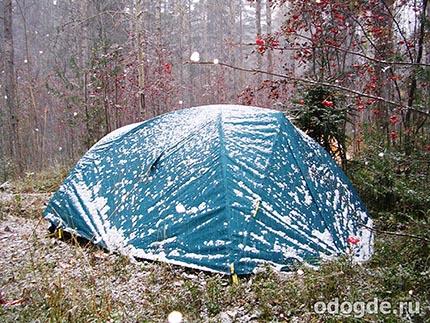 дождь со снегом в лесу