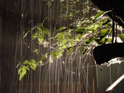 плачет дождь