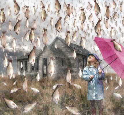 необычные дожди