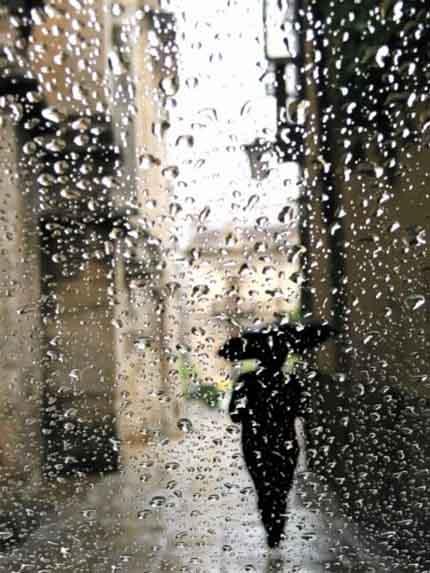 слезы дождя о поэте