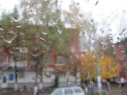 Опять дожди за окном