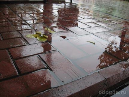 вчерашний дождь