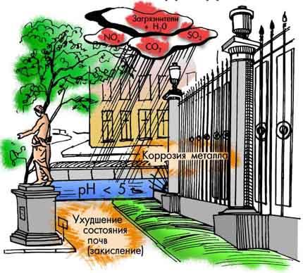 последствия кислотных дождей