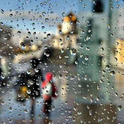 Язык дождя